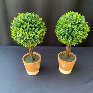 Topiary  artificial plants